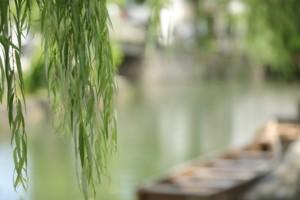 キニナッタ夏散策 倉敷美観地区